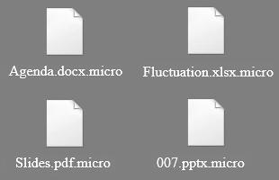 Los archivos .micro